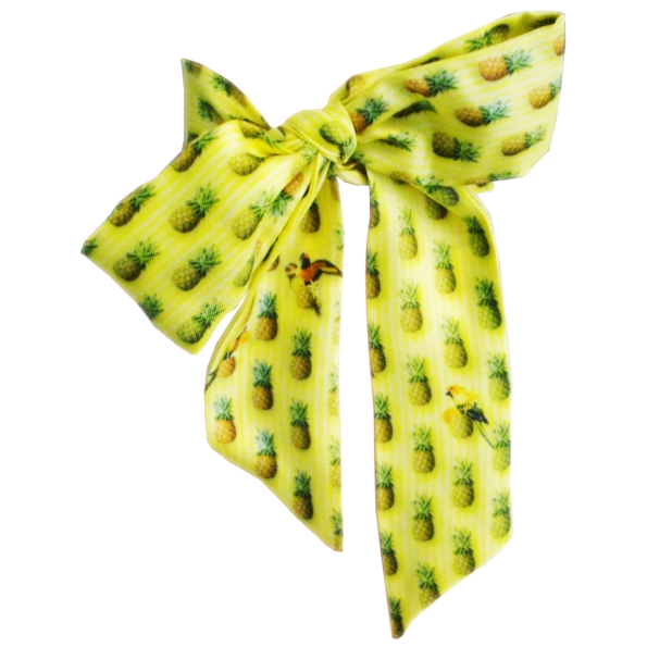 cassis-royal-lavalliere-ananas-pineapple-perroquet-parrot-jaune-yellow-soie-silk-made-in-france