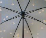 cassis-royal-cassisroyal-parapluie-umbrella-pluie-rain-passionnement-paquerettes-marguerite-flowers