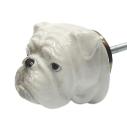 And Mary, Poignée de placard en porcelaine Bulldog - cassisroyal.com